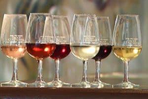 Wine Tasting @ Groot Contantia